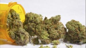 australia-medicinal-marijuana1-dailymail